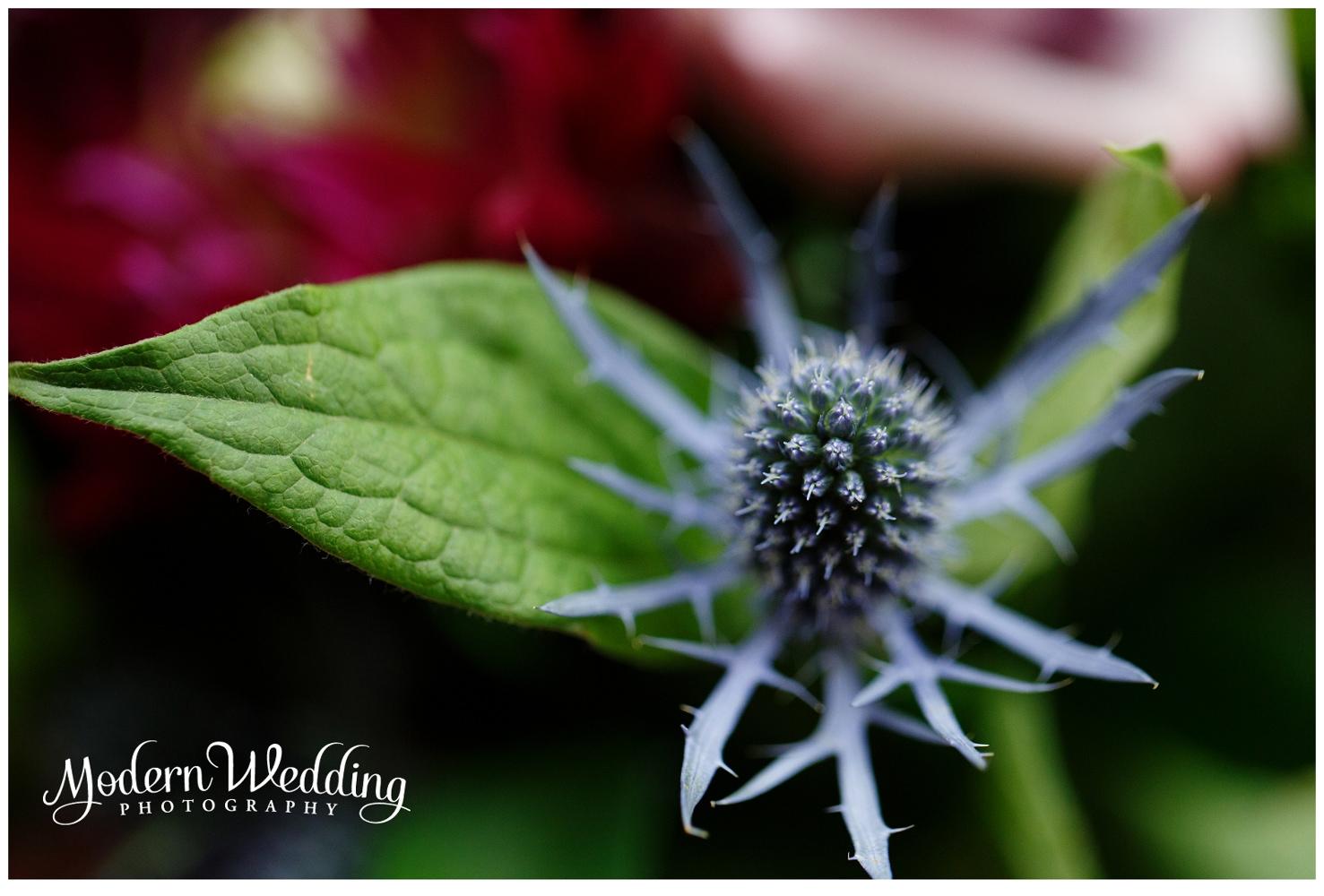 Modern Wedding Photography 56
